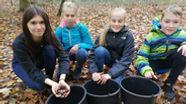 Kinder sammeln Eicheln für klimafesten Wald | Bild:Albrecht Rauh BR