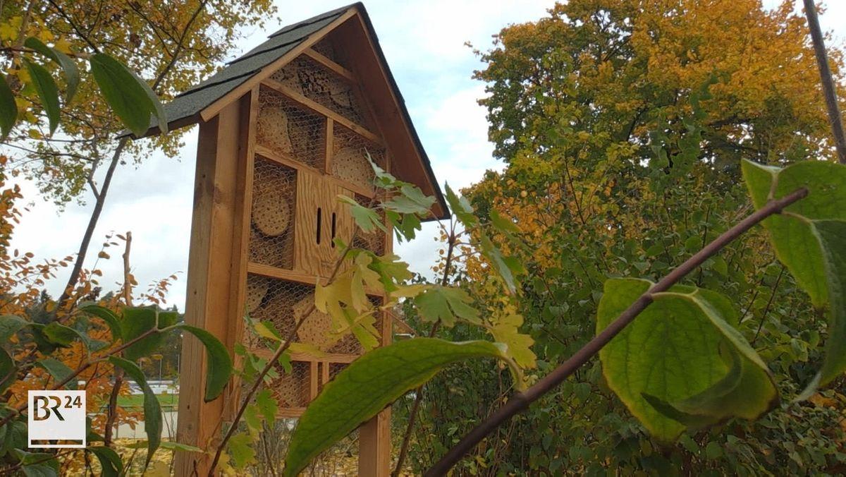 Insektenhotel in Erlangen