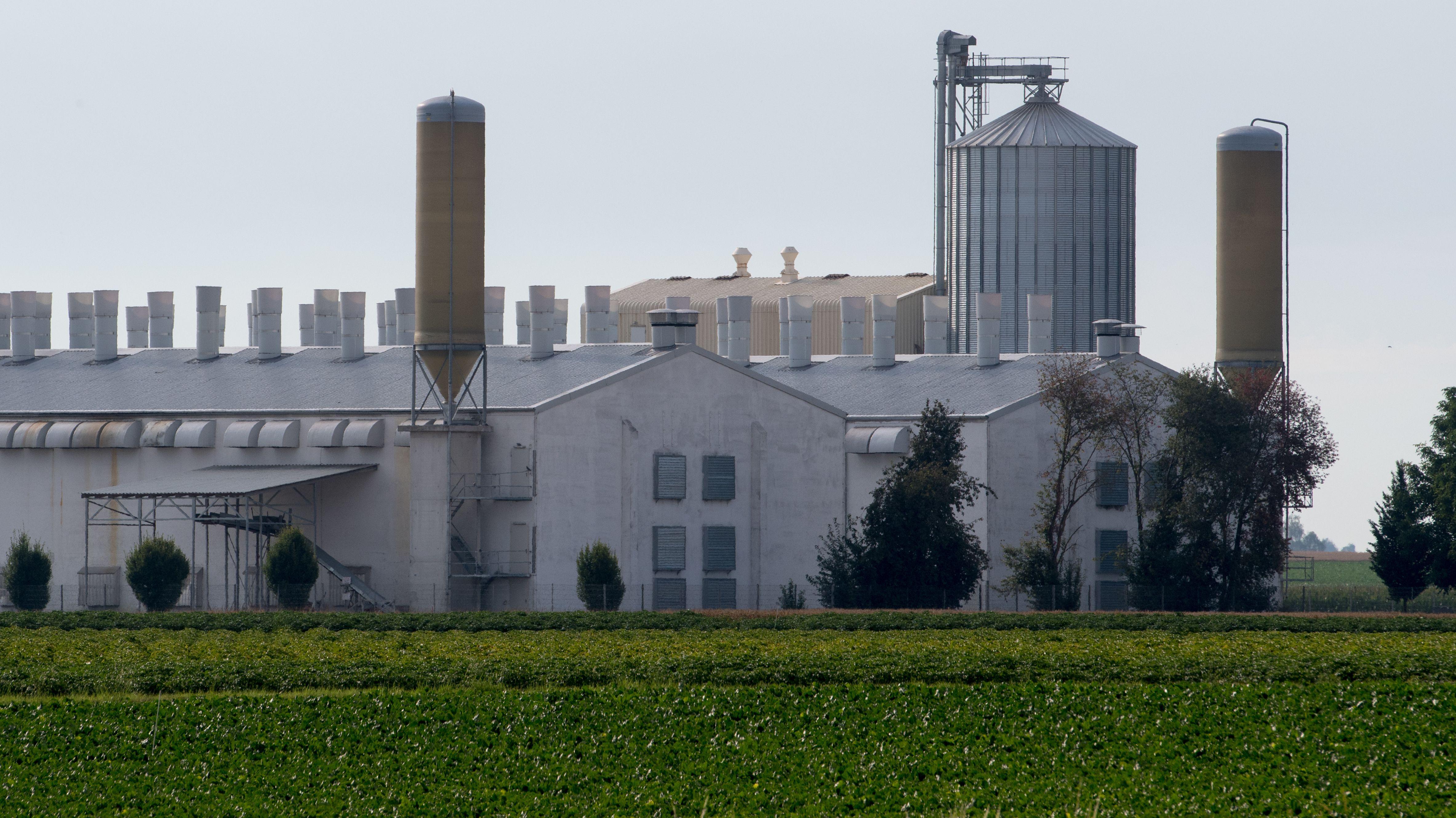 Ein ehemaliger Bayern-Ei-Betrieb in Aiterhofen. Das Unternehmen besaß in Niederbayern insgesamt vier Legebetriebe mit rund einer Million Hennen.