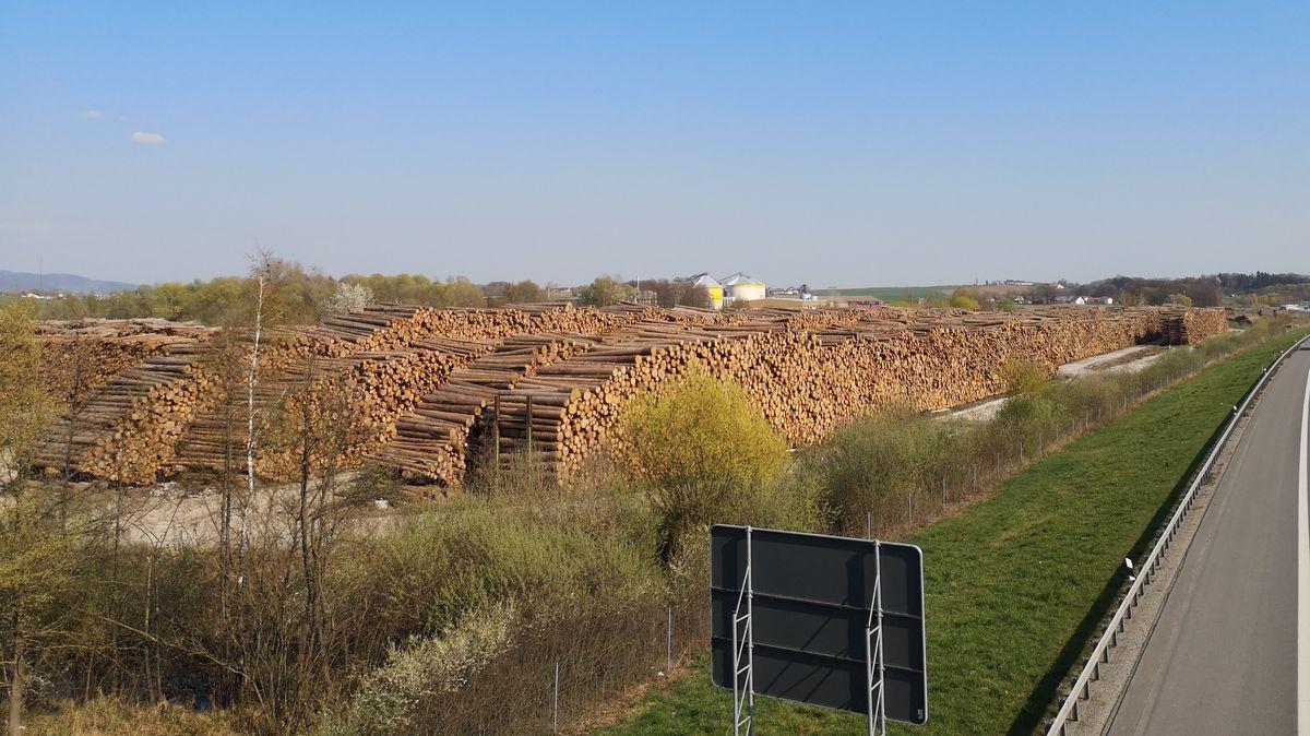 Beim Sägewerk Schwaiger in Deggendorf stapeln sich die Holzstämme meterlang an der Autobahn entlang.