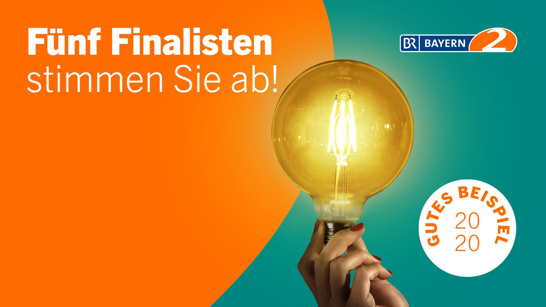 Fünf Finalisten - Stimmen Sie ab!