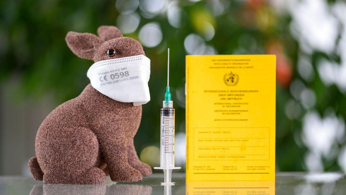 Ein Hase mit FFP2-Maske, ein Spritze und Impfbuch stehen auf einem Tisch.