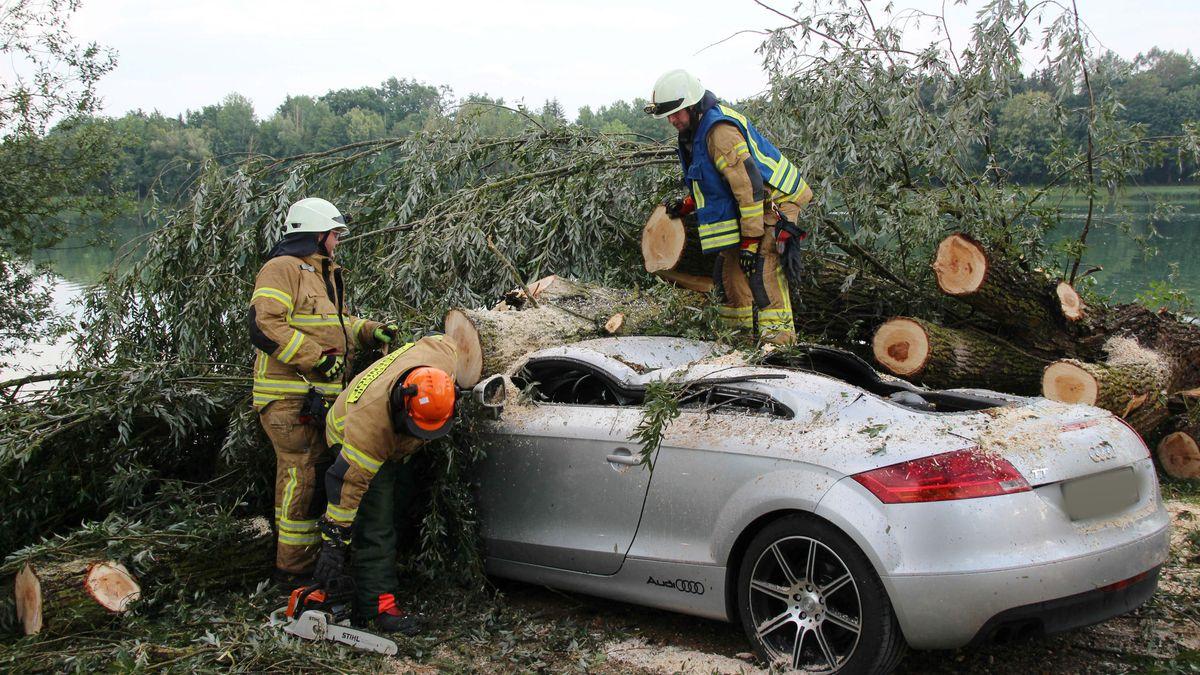 Auf diesen Sportwagen ist ein Baum gekippt und hat das Dach komplett eingedrückt.