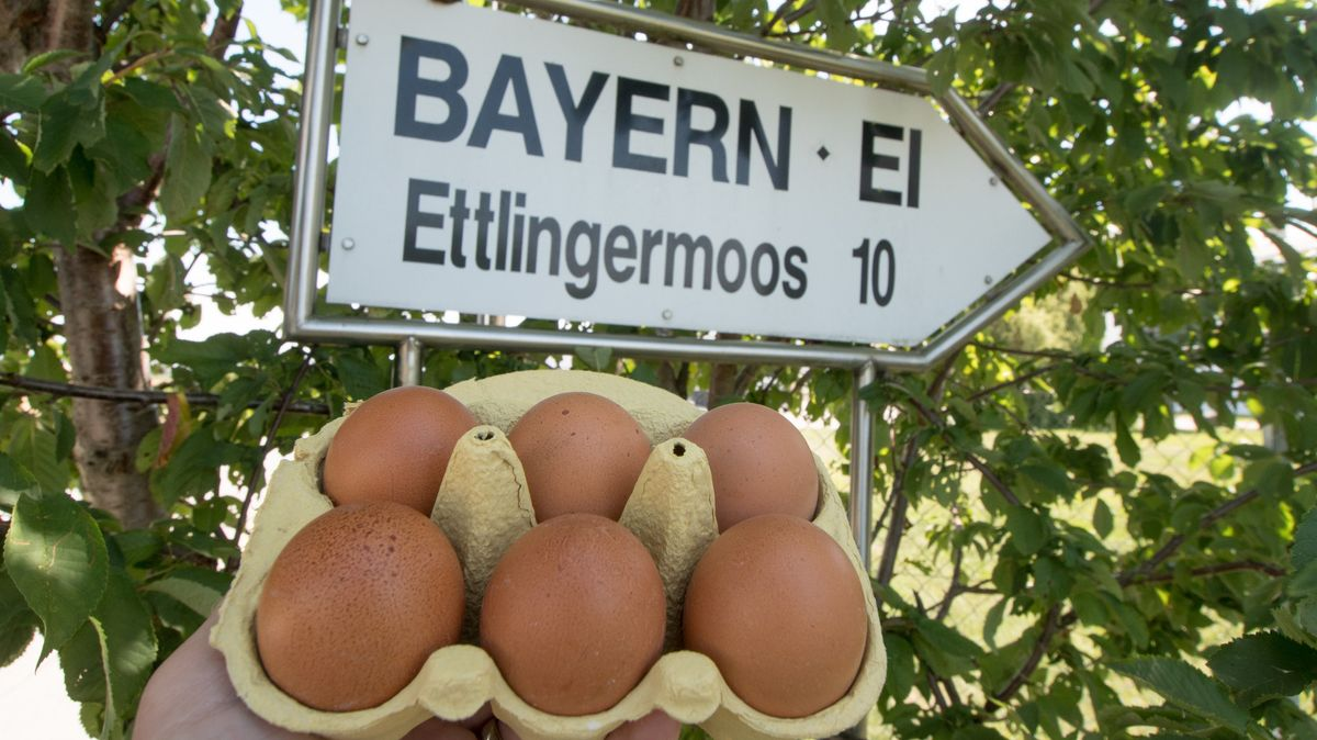 Wegweiser nahe des Firmengeländes von Bayern-Ei
