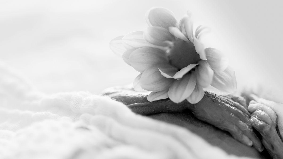 Hände eines Sternenkinds mit einer Blume