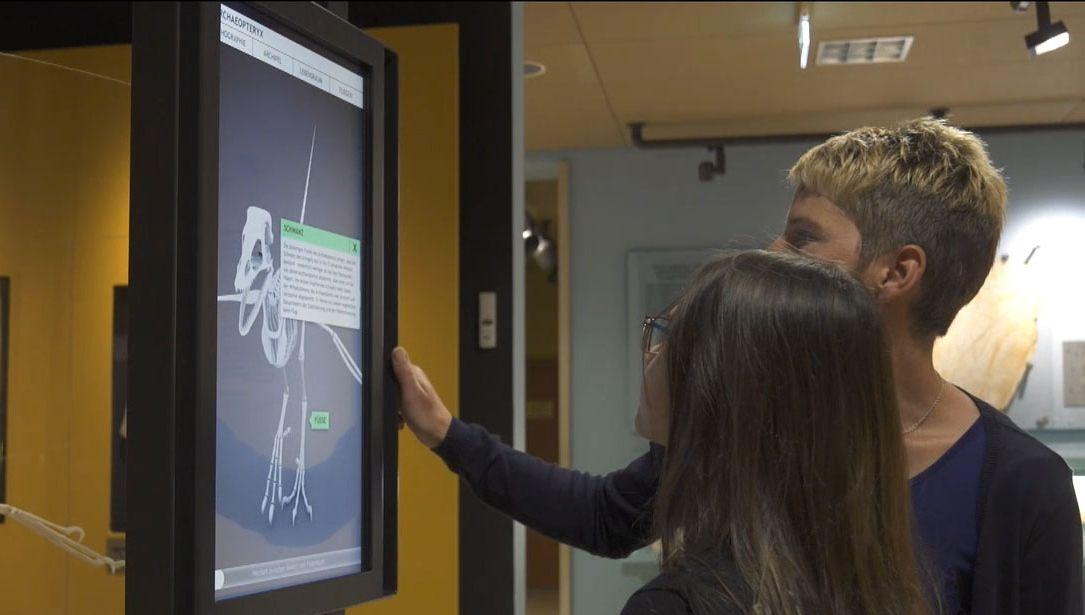 Besucher betrachten das 3D-Modell eines Archaeopteryx