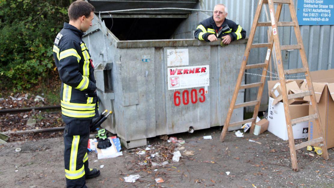 Aschaffenburger Feuerwehrmänner bei der Katzenrettung