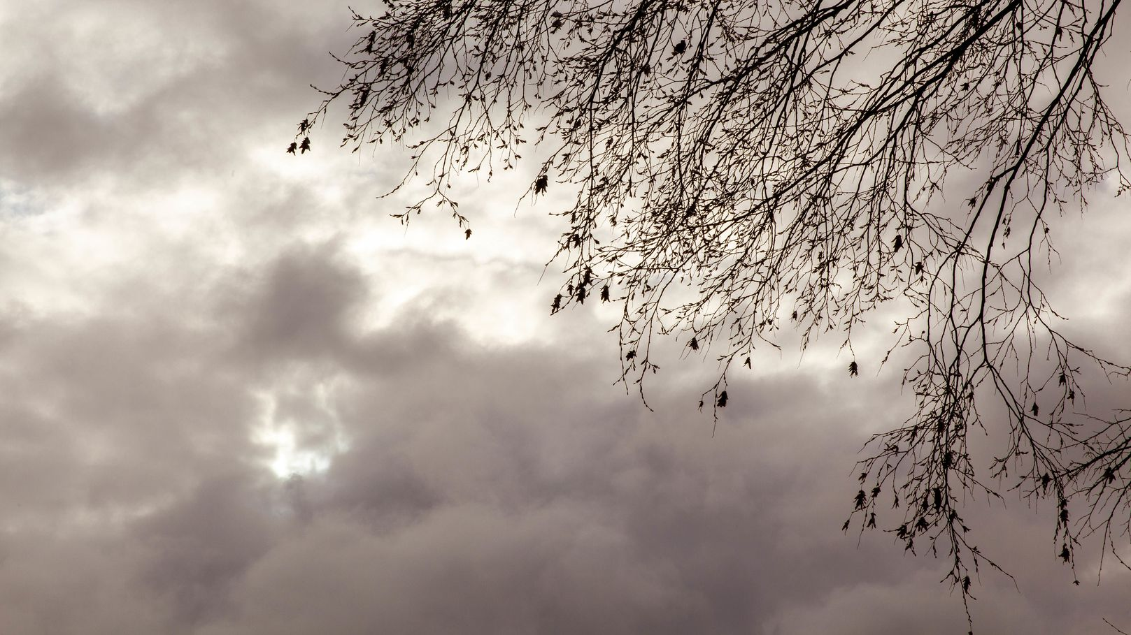 Windige Zeiten: Am Freitagnacht saust Sturmtief Bianca durch Bayern. Danach wird es milder.