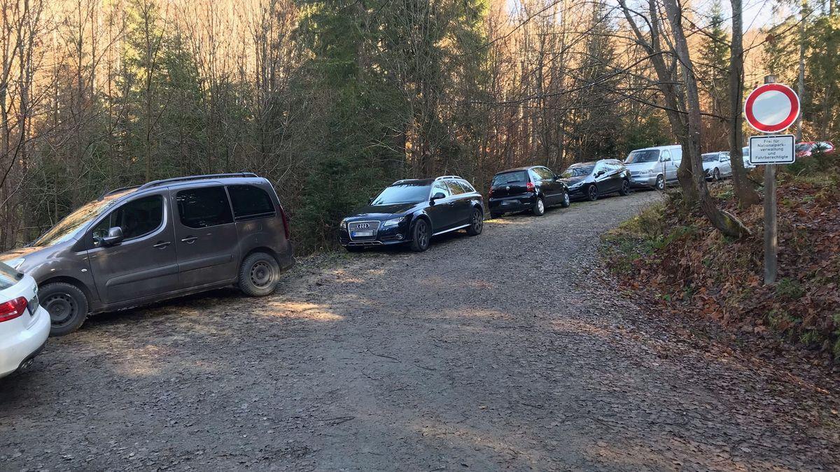 Autos parken auf einem Forstweg nahe des Parkplatzes Fredenbrücke am Lusen