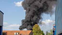 Eine große Rauchwolke steigt vom Außengelände einer Müllentsorgungsfirma auf. | Bild:dpa-Bildfunk/Schmelzer