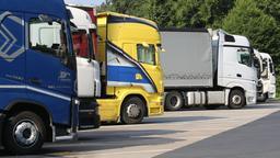 Lastwagen stehen auf einem Rastplatz (Symbolbild) | Bild:pa/dpa/Stephan Fricke