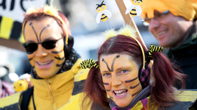 Teilnehmer einer Demonstration stehen als Bienen verkleidet vor dem Landtag in München.