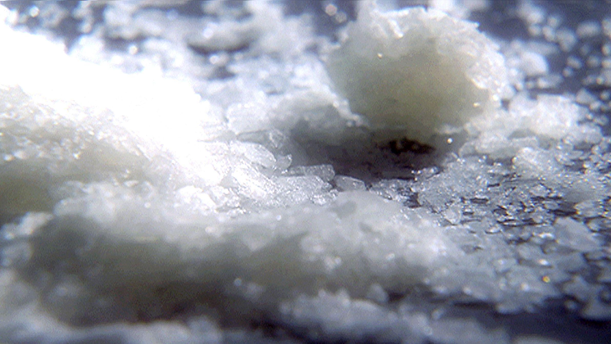 In einer Mainburger Wohnung stellten die Polizeibeamten große Mengen von Crystal Meth sicher.