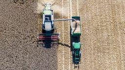 Deutsche Bauern fahren mäßige Ernte ein | Bild:picture-alliance/dpa