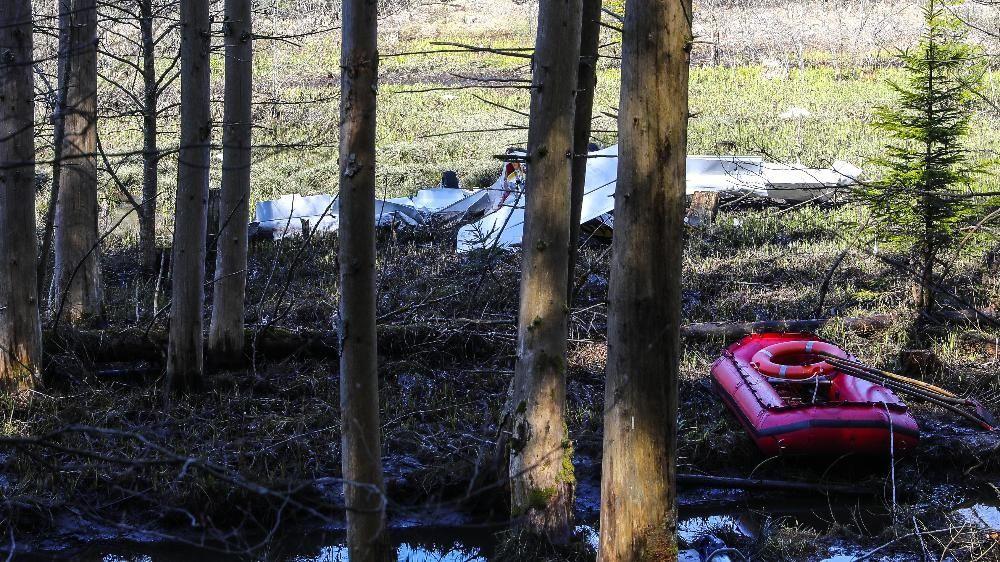 Das abgestürzte Flugzeugwrack in einem Waldstück