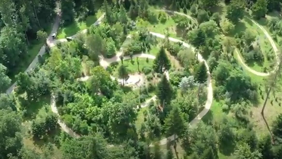Welt-Wald bei Freising aus der Luft