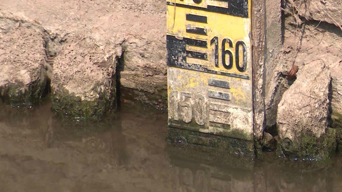 Der Pegel an vielen Flüssen in Mittel- und Oberfranken ist im Moment extrem niedrig.
