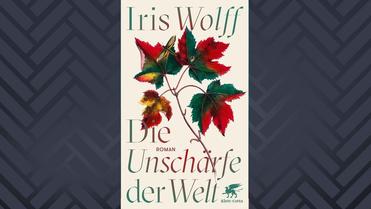 """Cover von """"Die Unschärfe der Welt"""""""