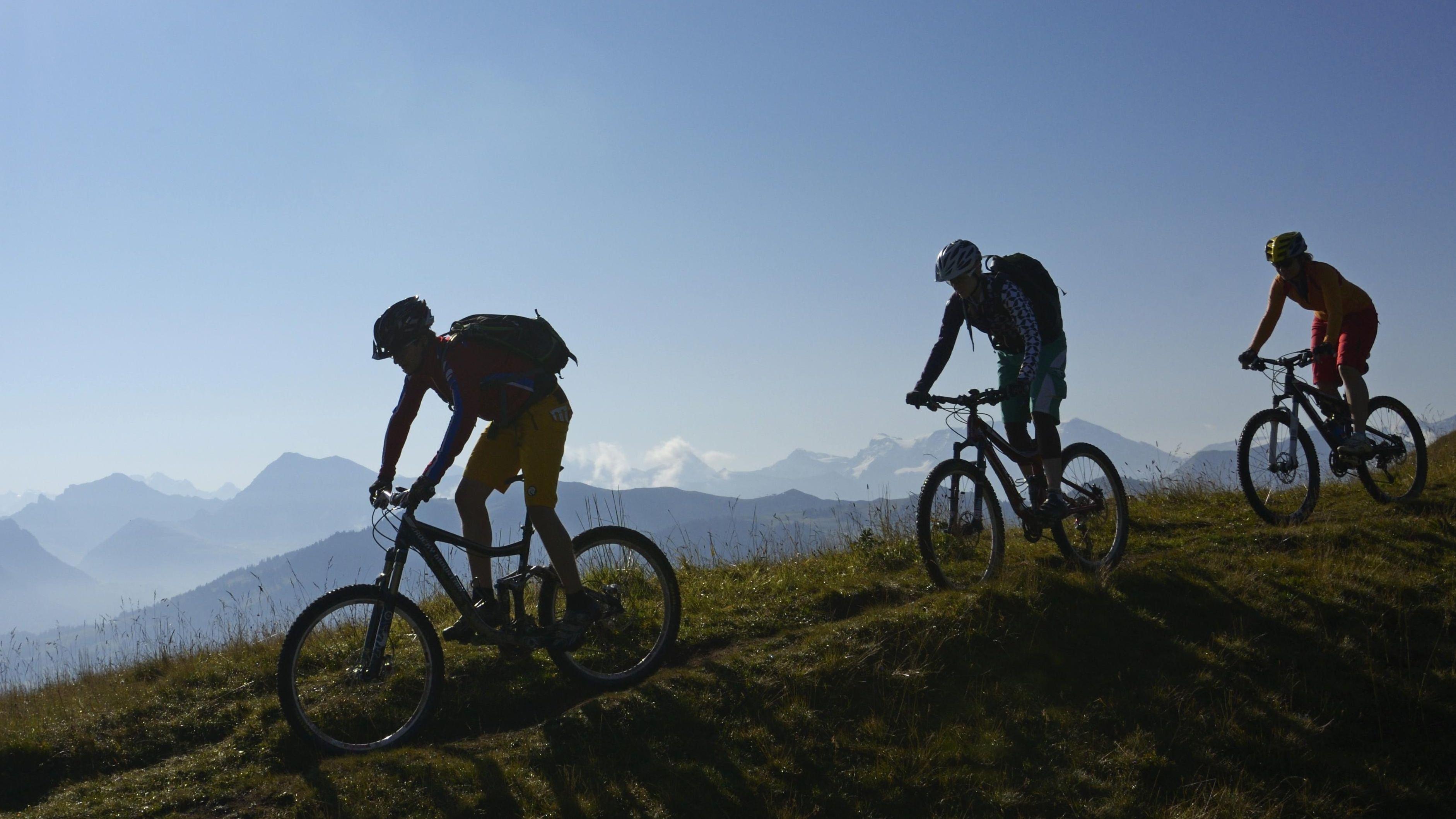 Drei Mountainbiker (Archiv-/Symbolbild).