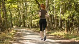 Joggerin im Wald (Symbolbild) | Bild:Picture-Alliance