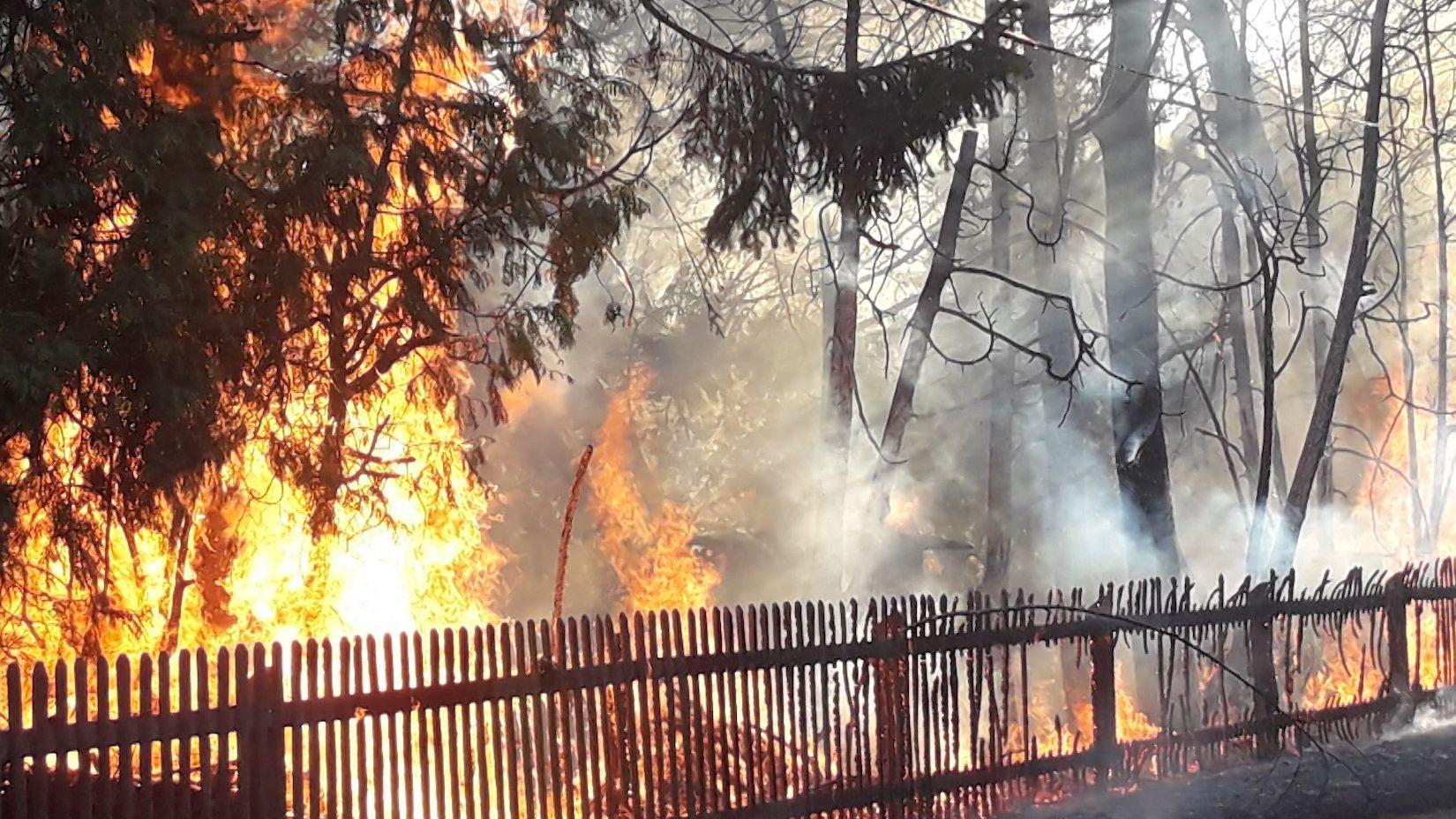 In Dillingen brennt eine Hecke