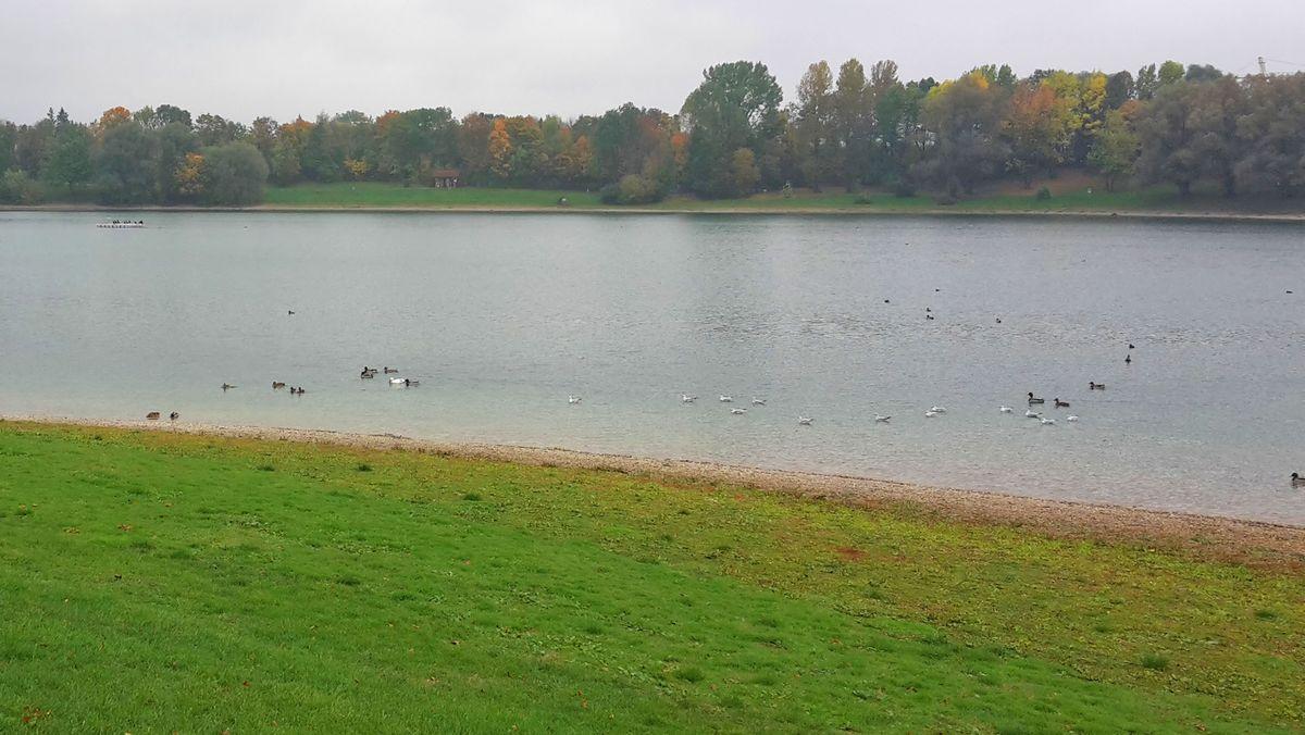 Heimstettener See zwischen Feldkirchen und Aschheim