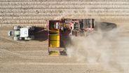 Kartoffelernte auf einem trockenen Feld in der Region Hannover (September 2020)   Bild:picture alliance/Julian Stratenschulte/dpa