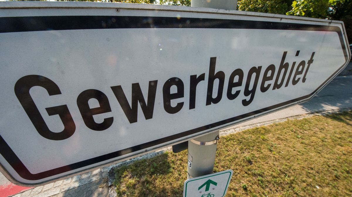 Das Weidener Bündnis Walderhalt will das geplante Gewerbegebiet verhindern.