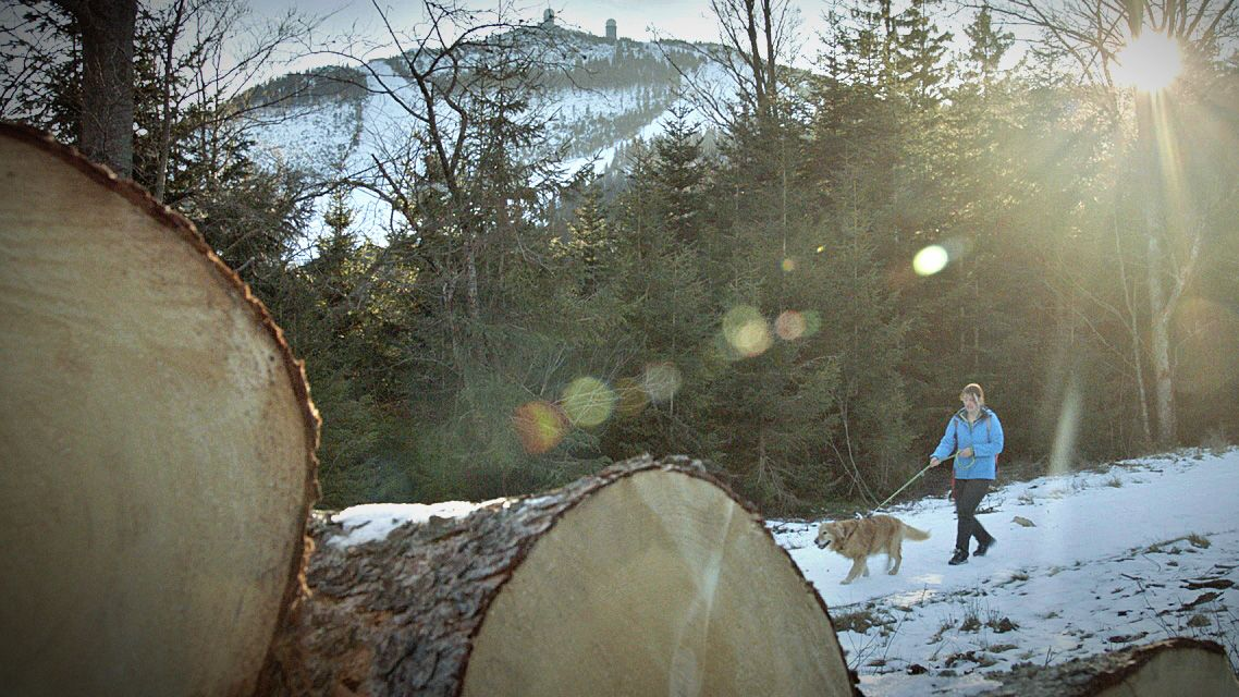 Isabelle Auer hat mit ihrem Hund Andi die jeweils höchsten Berge der Bundesländer erwandert.