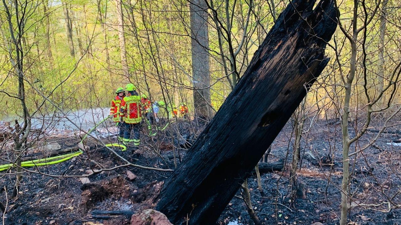 Waldbrand zwischen Lohr und Partenstein gelöscht