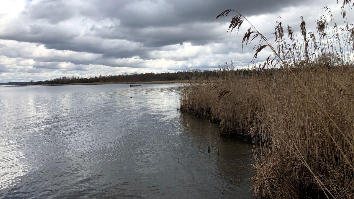 Aussicht auf die Chiemseebucht vom Lachsgang im Naturschutzgebiet.