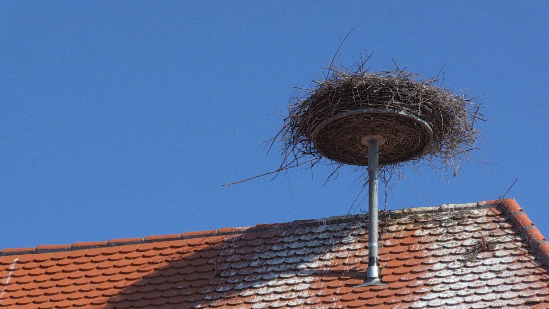 Leeres Storchennest in Thannhausen