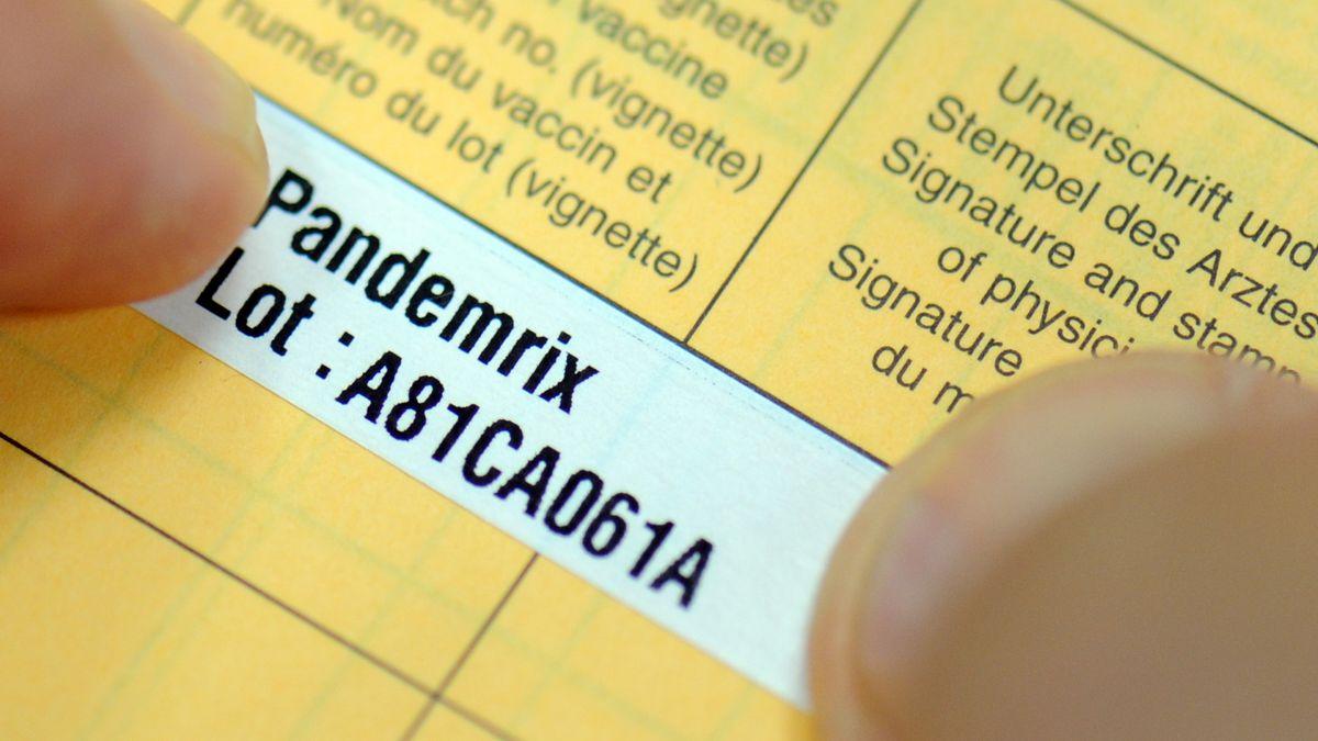"""Impfpass mit Aufkleber """"Pandemrix"""" für den Grippeimpfstoff."""