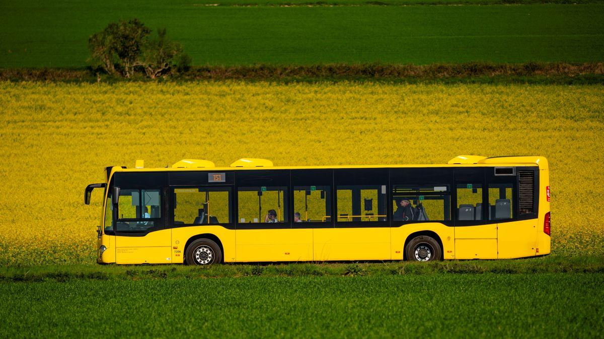 Schulbub auf Irrfahrt: Er war in den falschen Bus gestiegen (Symbolbild)