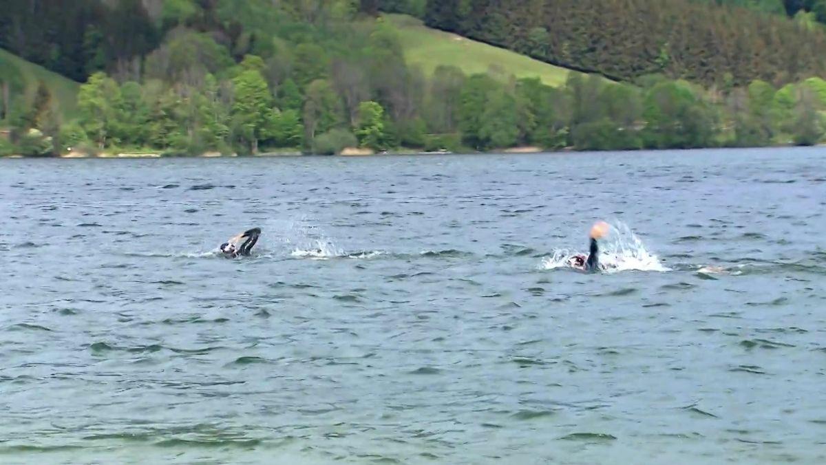 Schwimmer im Schliersee