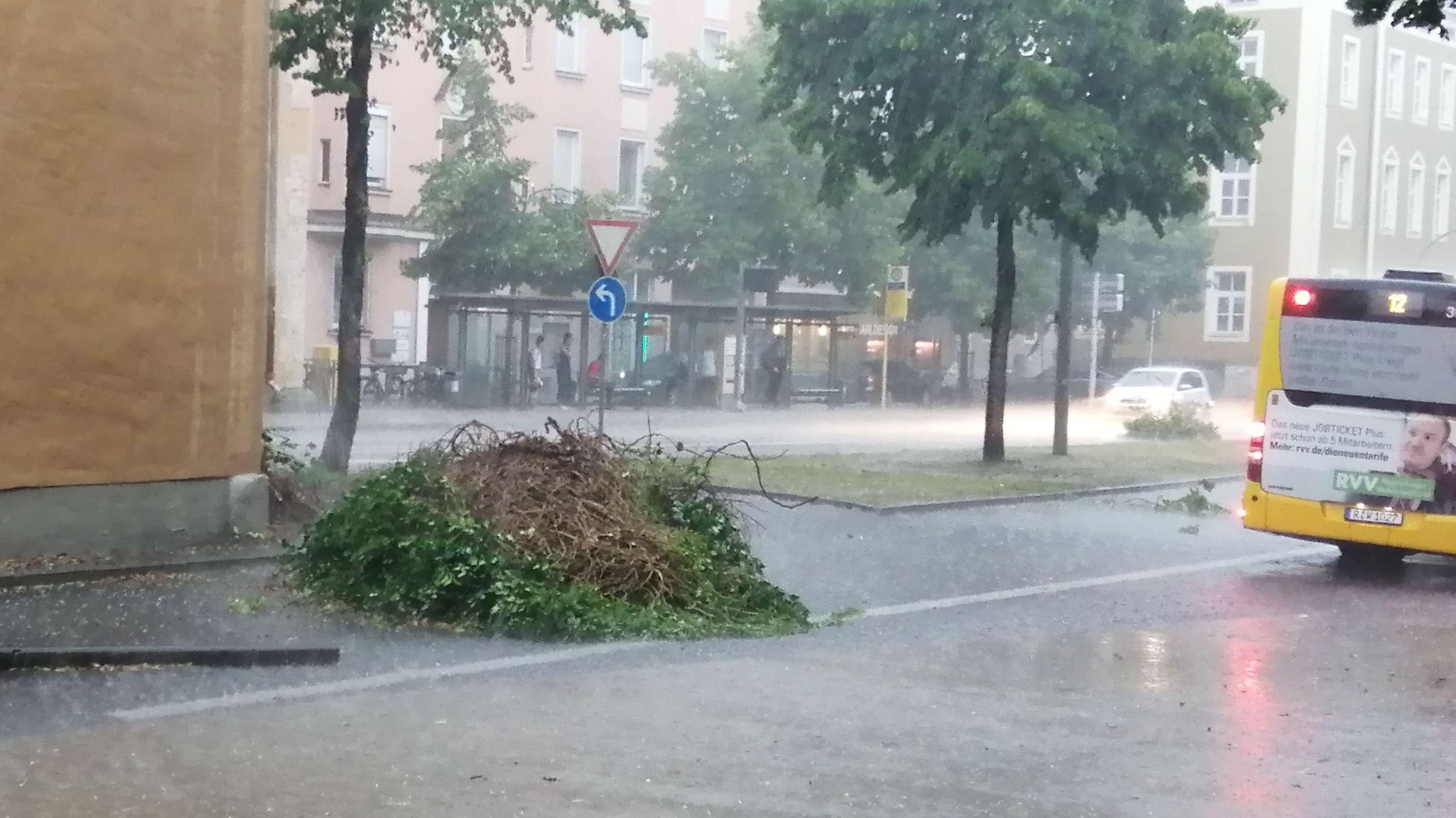 Am Regensburger Dachauplatz haben Sturm und Starkregen gewütet