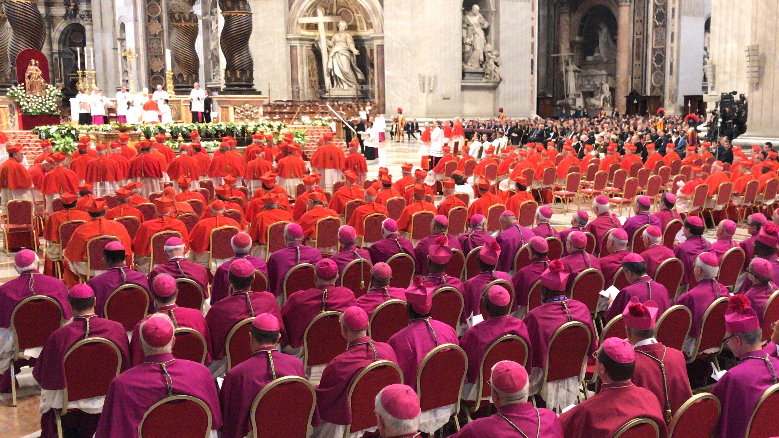 283 Bischöfe, Sachverständige, Sondergesandte und Beobachter sind Teilnehmer an der Amazonassynode in Rom.
