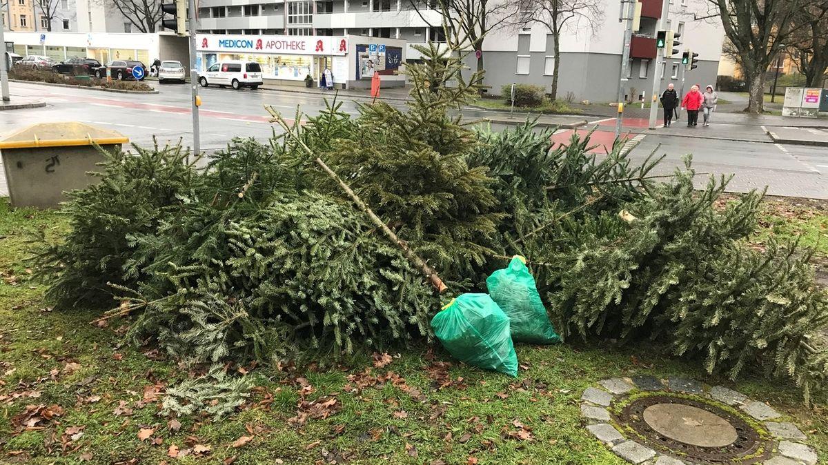 Falsch entsorgte Weihnachtsbäume in Nürnberg.