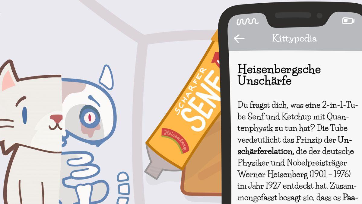 "Screenshot aus dem Physik-Spiel ""Katze Q"""
