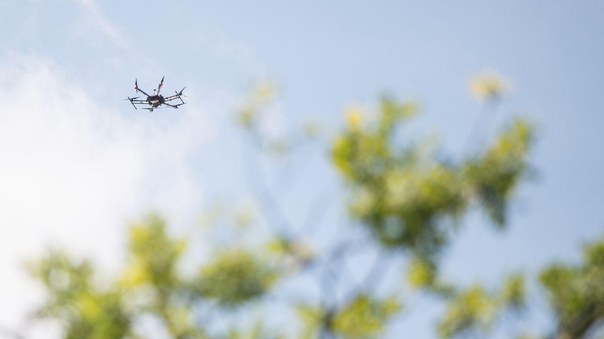 Eine Drohne fliegt über einen Garten