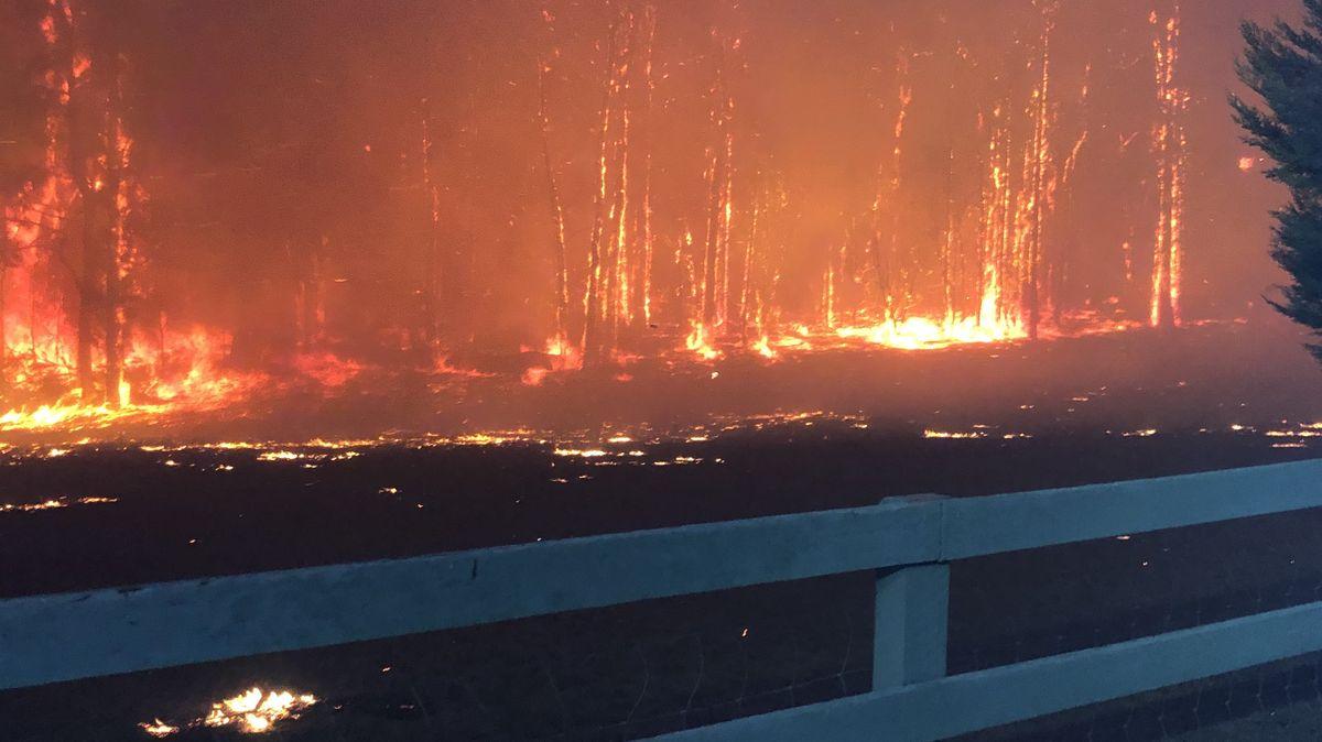 Brände in New South Wales