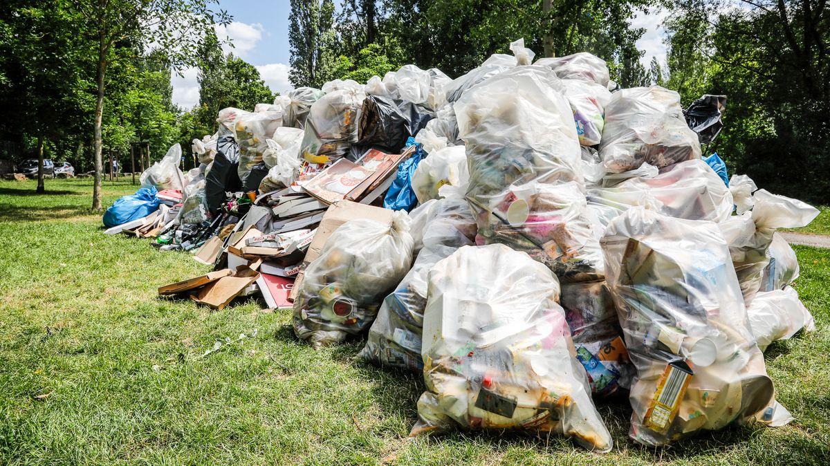 25 Kubikmeter sammelte das Gartenamt am vergangenen Wochenende am Main ein