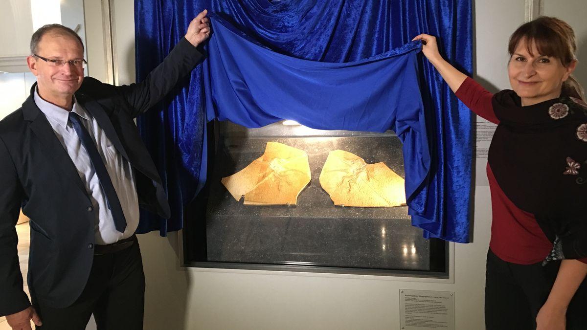 Archaeopteryx: Fossil des Jahres. Die neue Leiterin des Jura-Museums, Christina Ifrim, und der kommissarische Leiter Alexander Nützel.