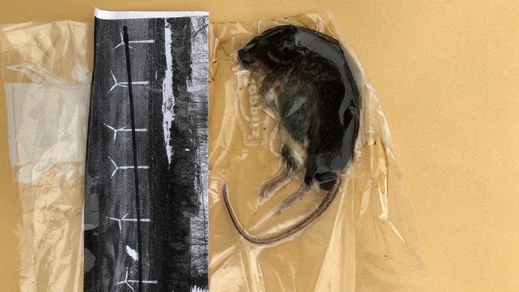 Bei den ersten Drohbriefen befanden sich in zwei Umschlägen jeweils verweste Mäuse und ein Zeitungsartikel zu den geplanten Windrädern.