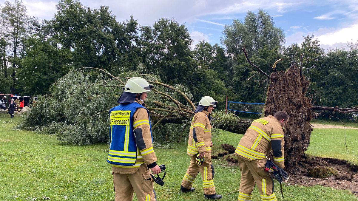 Feuerwehrler arbeiten an einem umgekippten Baum am Roither See in Neutraubling.