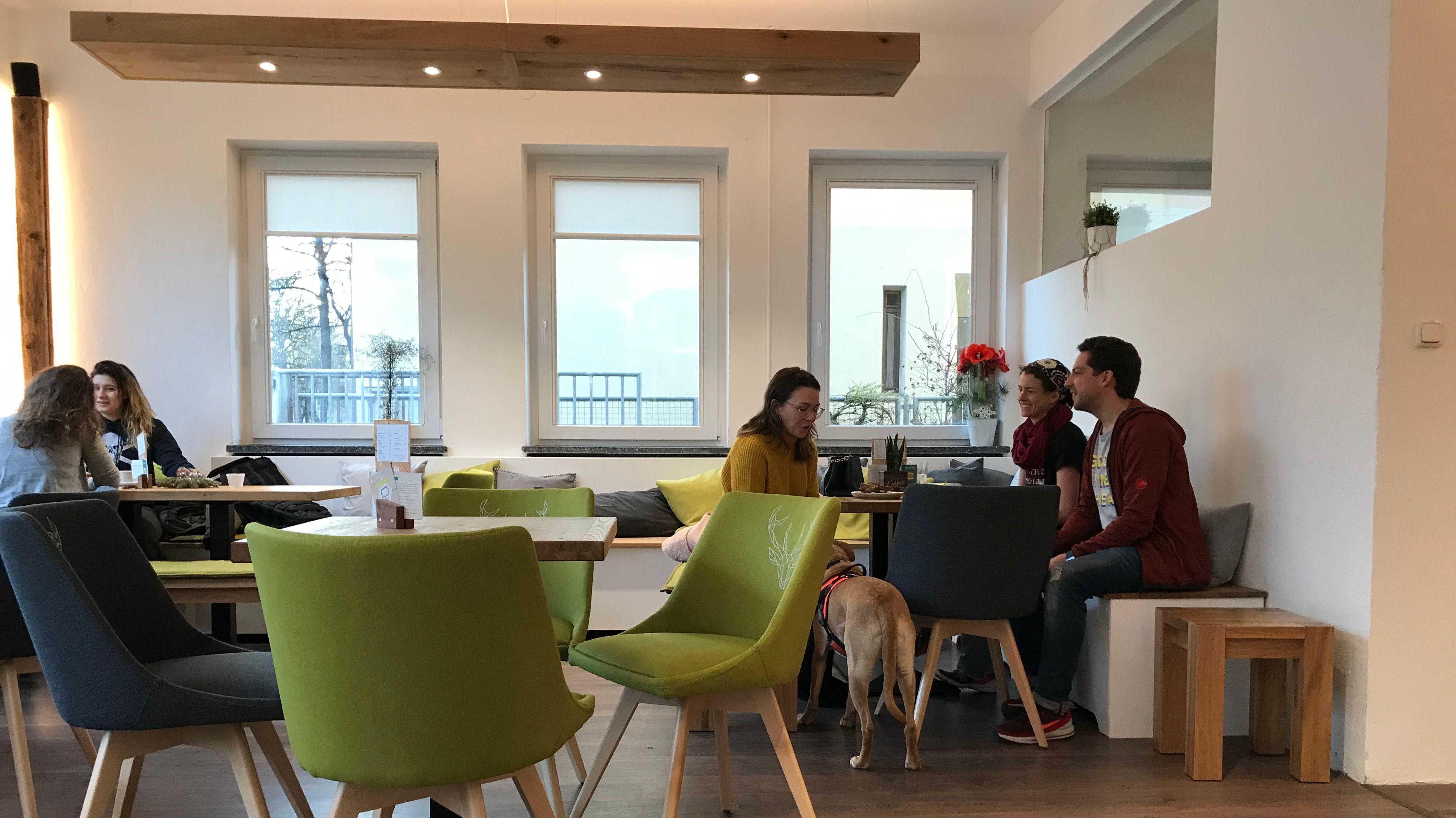 Das Café von Innen. Grüne Stühle, viel Holz, und eine ruhige Atmosphäre.