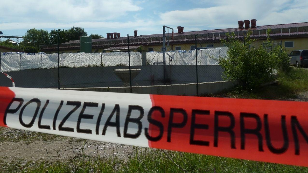 Tote Schweine in Osthausen werden entsorgt