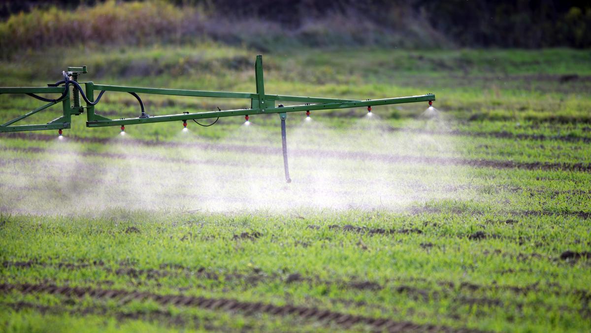 Einsatz von Pflanzenschutzmitteln auf einem Feld. Gesucht wird eine natürliche Alternative zu Glyphosat.