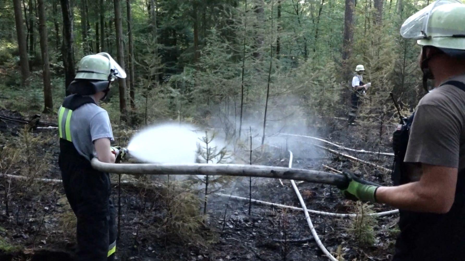 Waldbrand bei Wendelstein in Mittelfranken