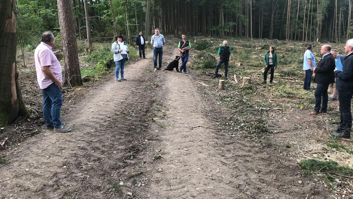 Bamberger Waldbauern: Mehr Unterstützung
